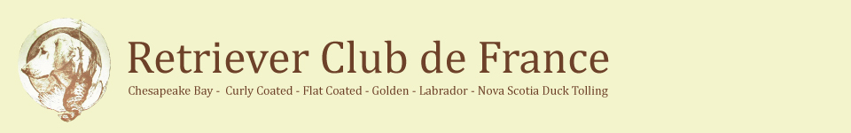 Retriever Club de France